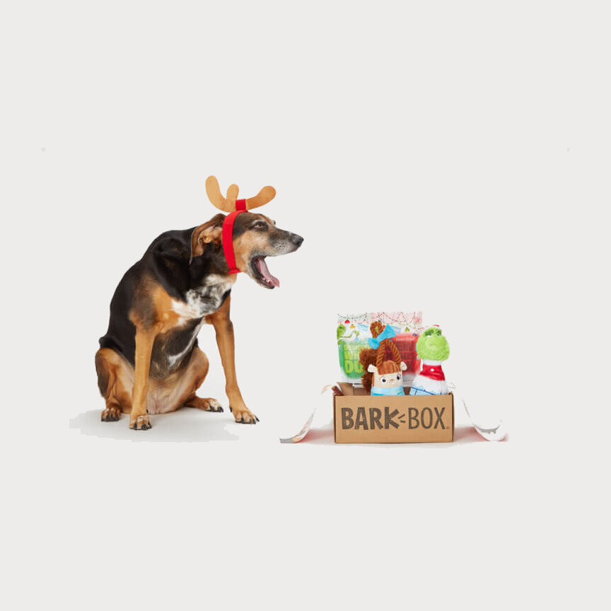 Barkbox Subscription You can gift this monthly subscription service for one month, three months, six months or yearly filled with fun, quirky (and sometimes cheeky) dog toys and treats.