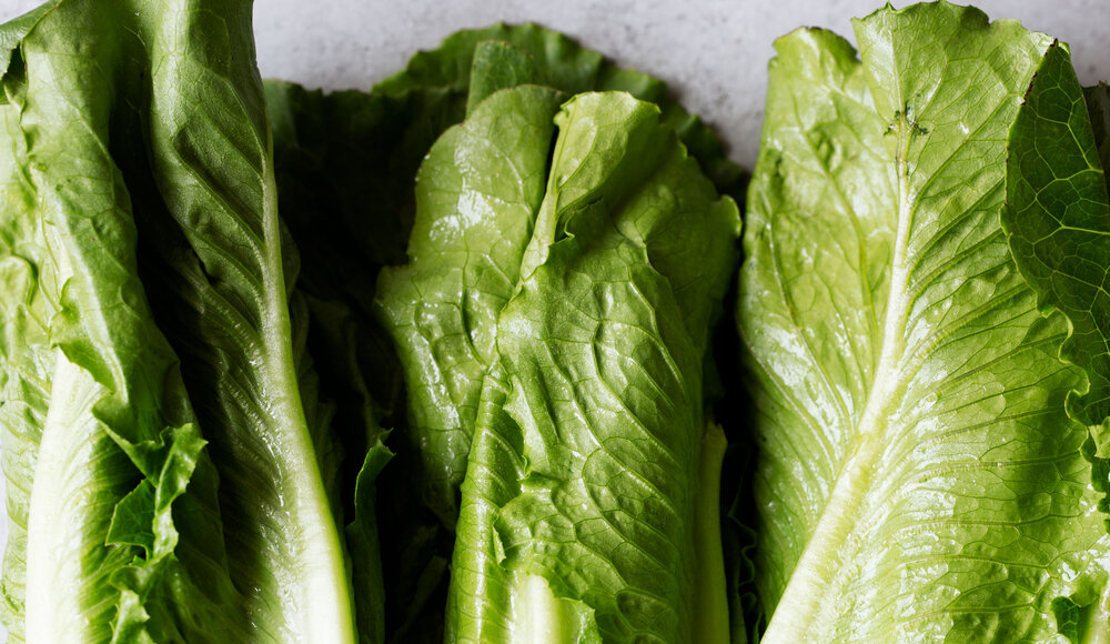 BLT-salad-ingredient-lettuce.jpg