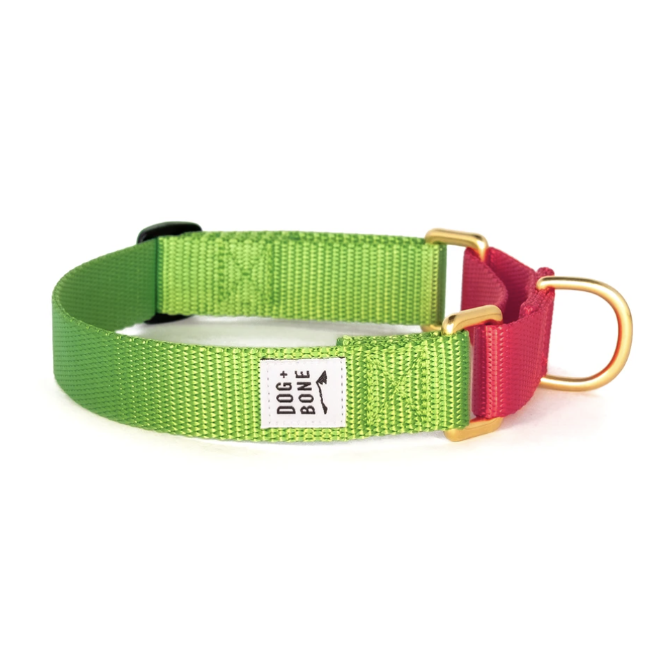 Dog + Bone Martingale Collar These collars are meant to gently remind dogs not to pull - it tightens like a chain collar would and looks so chic in the multi-color format. Benson has the red and navy color-way and we love it!