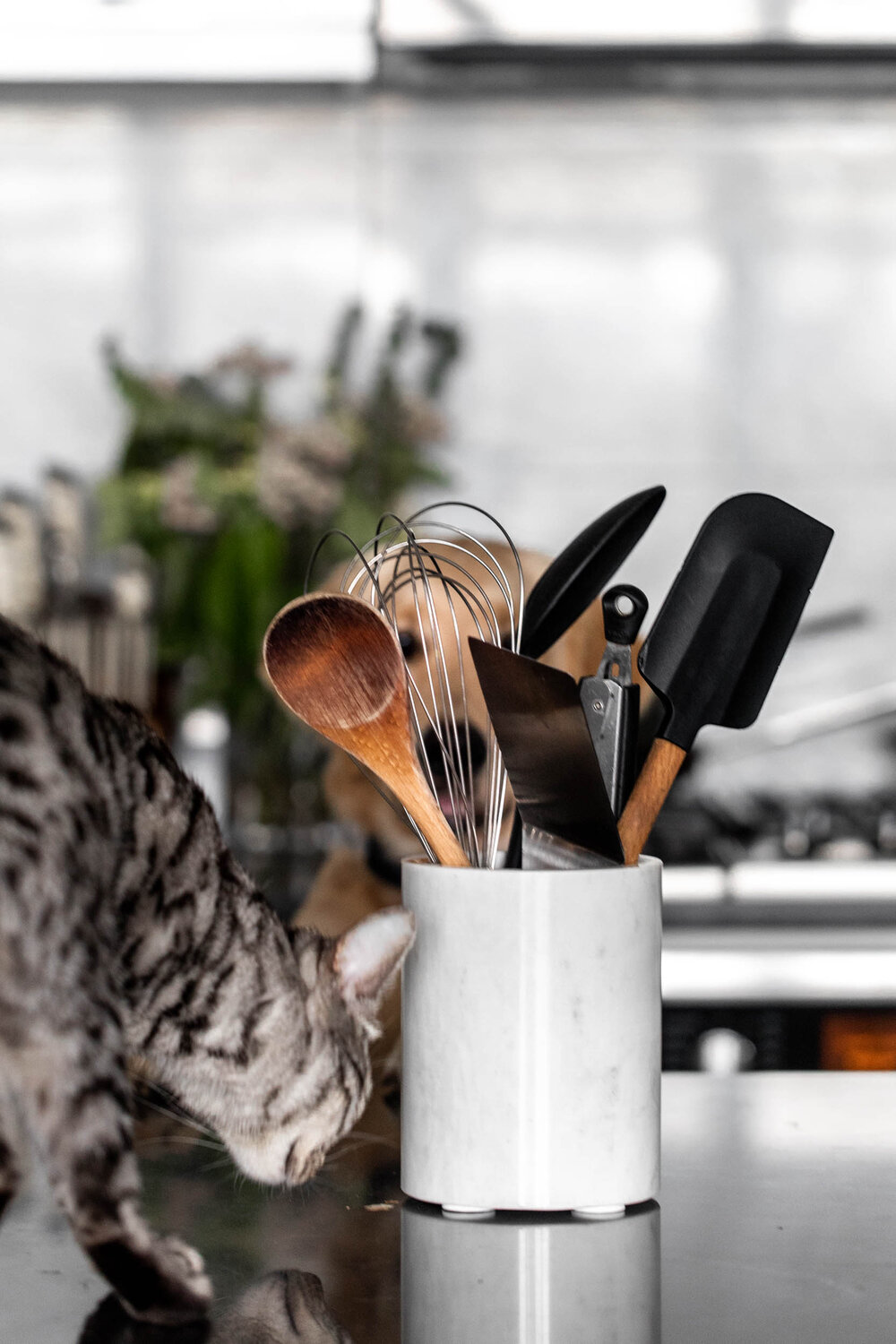 The Top 10 Essential Kitchen Tools Every Cook Should Own-43.jpg
