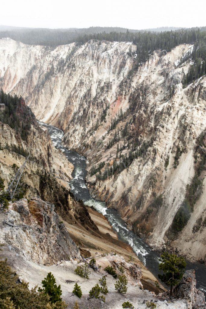Yellowstone national park montana