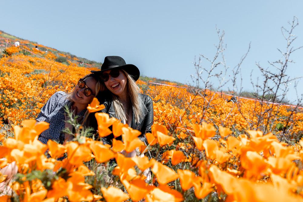 "super bloom-66.jpgCalifornia Day-trip: Lake Elsinore Poppy ""Super Bloom"""