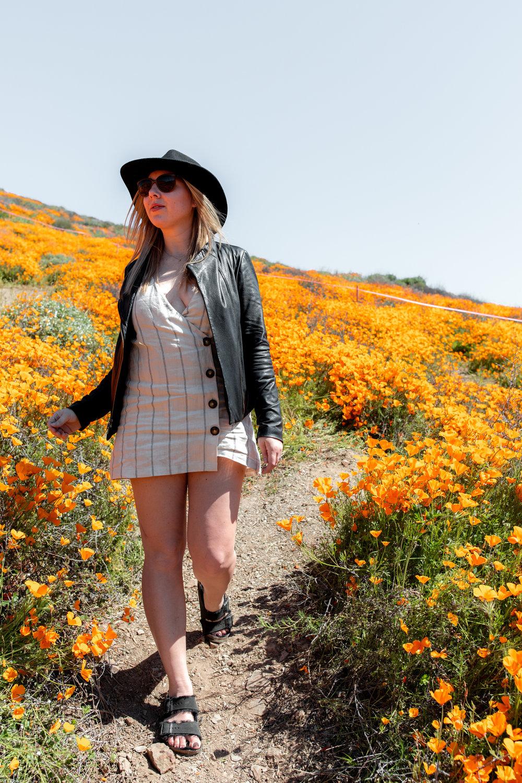 "California Day-trip: Lake Elsinore Poppy ""Super Bloom"" lifestyle"