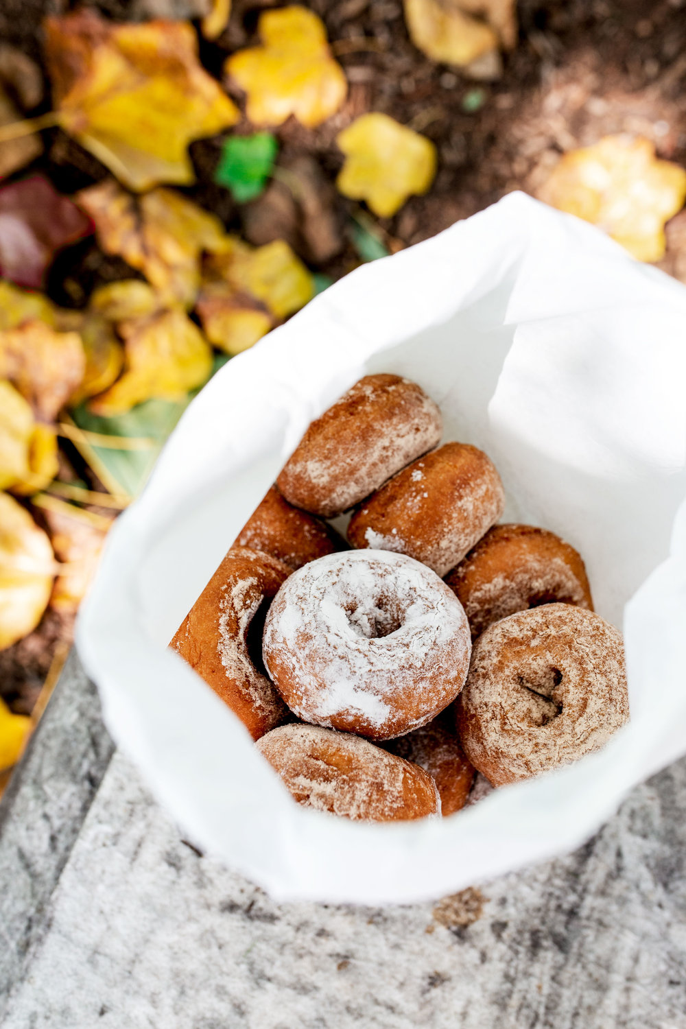 apple cider donuts melicks town farm califon new jersey cooking with cocktail rings