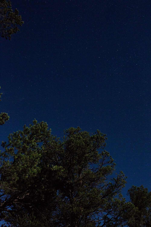 starry night sky grand canyon