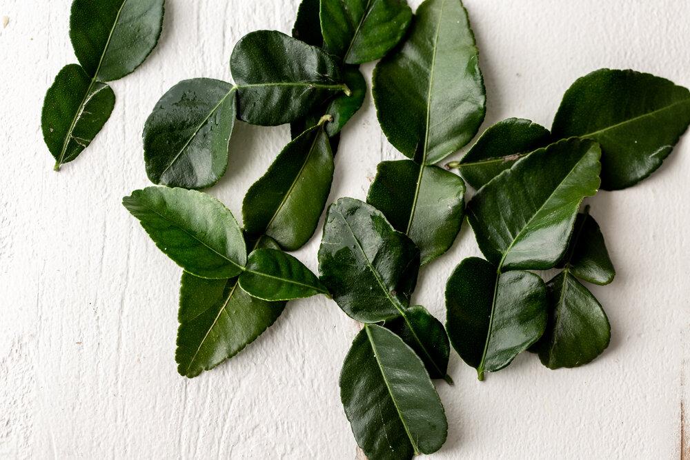 markut lime leaves