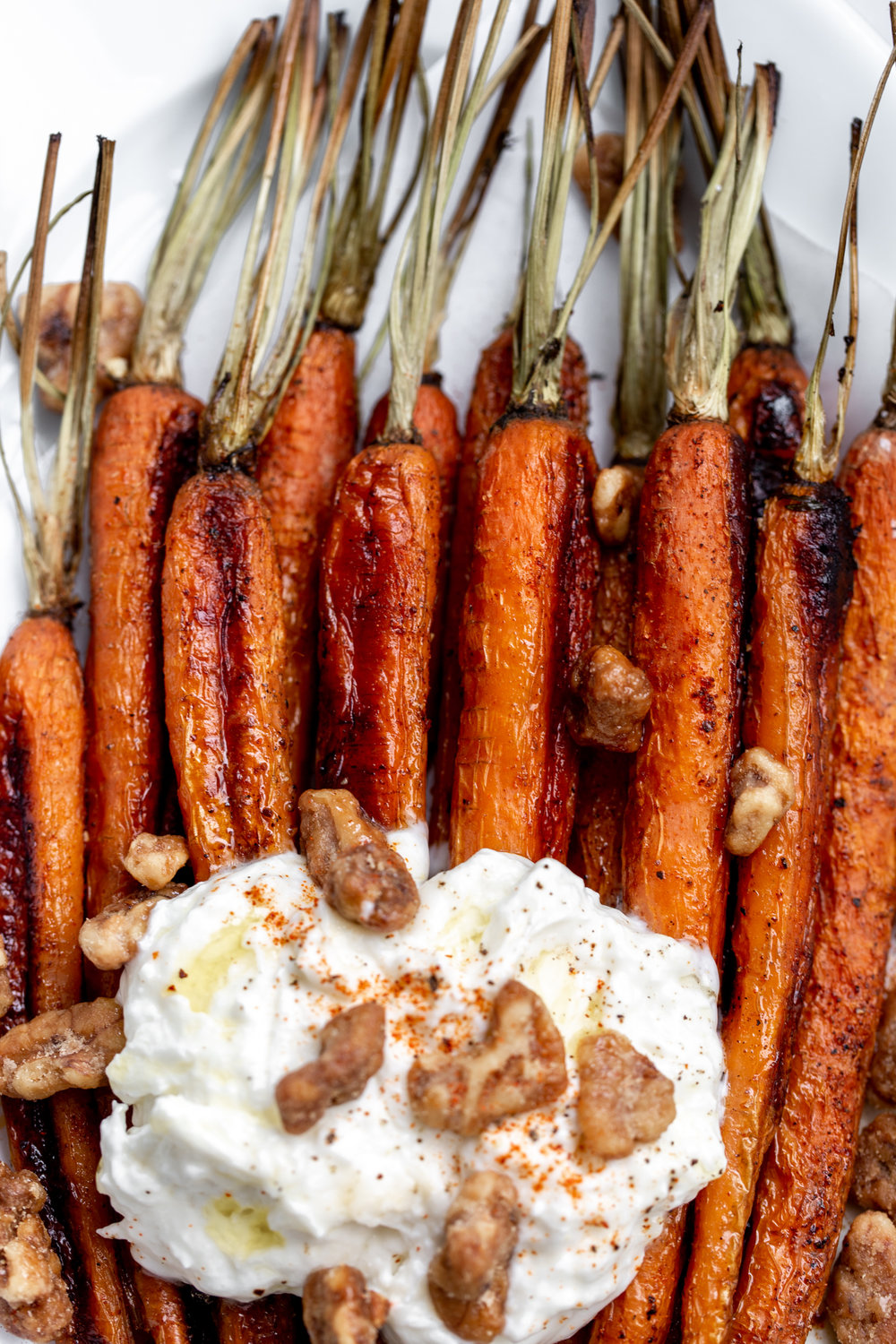 The roasted carrots are seasoned simply with salt, pepper and a touch of cayenne for a bit of spice then topped with creamy burrata cheese and some crispy, glazed walnuts closeup