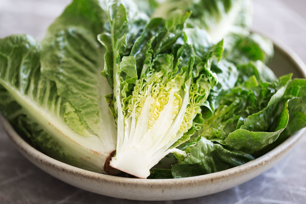 mini romaine little gem lettuce
