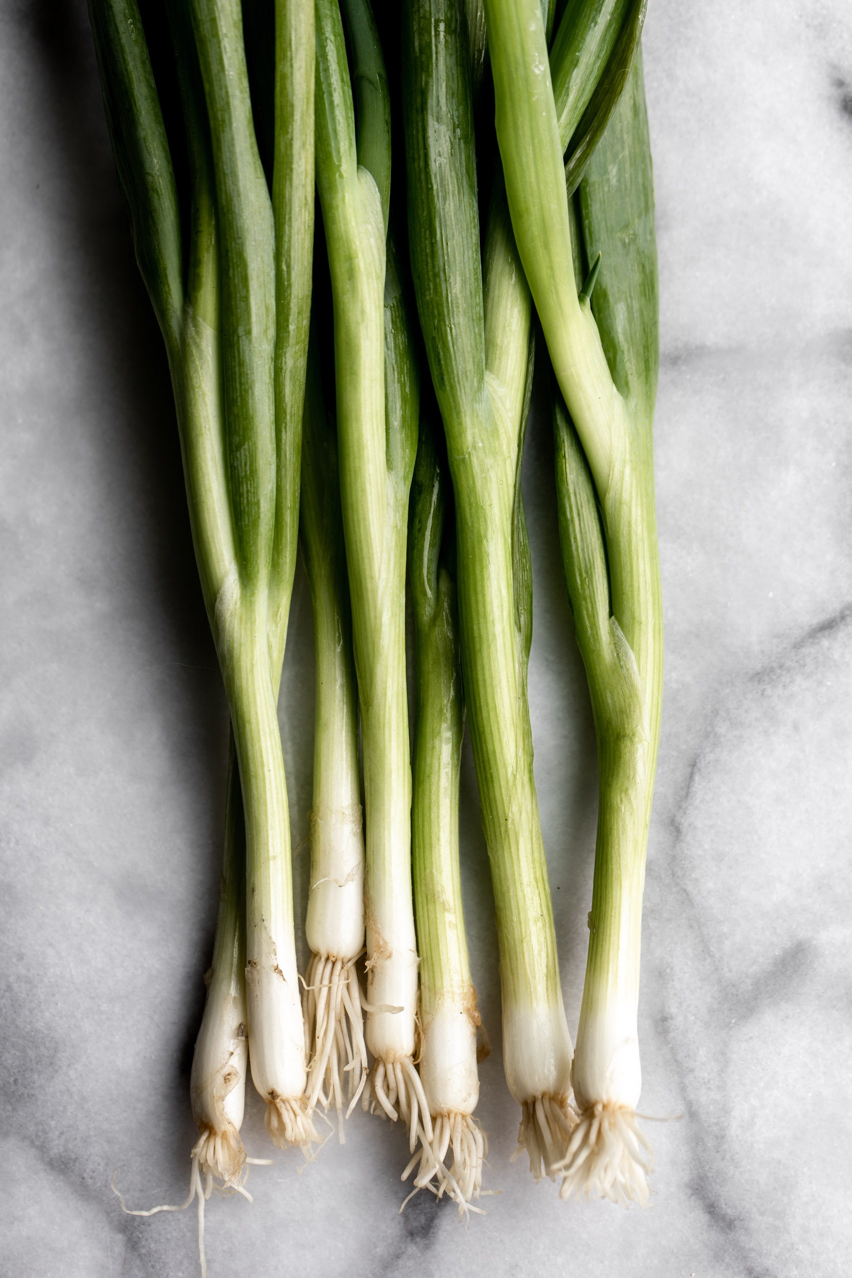 green onions bunched together on marble