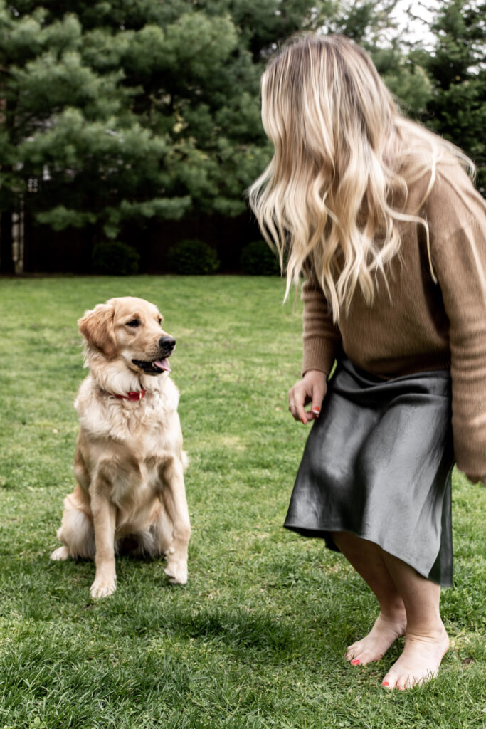 playing with golden retriever