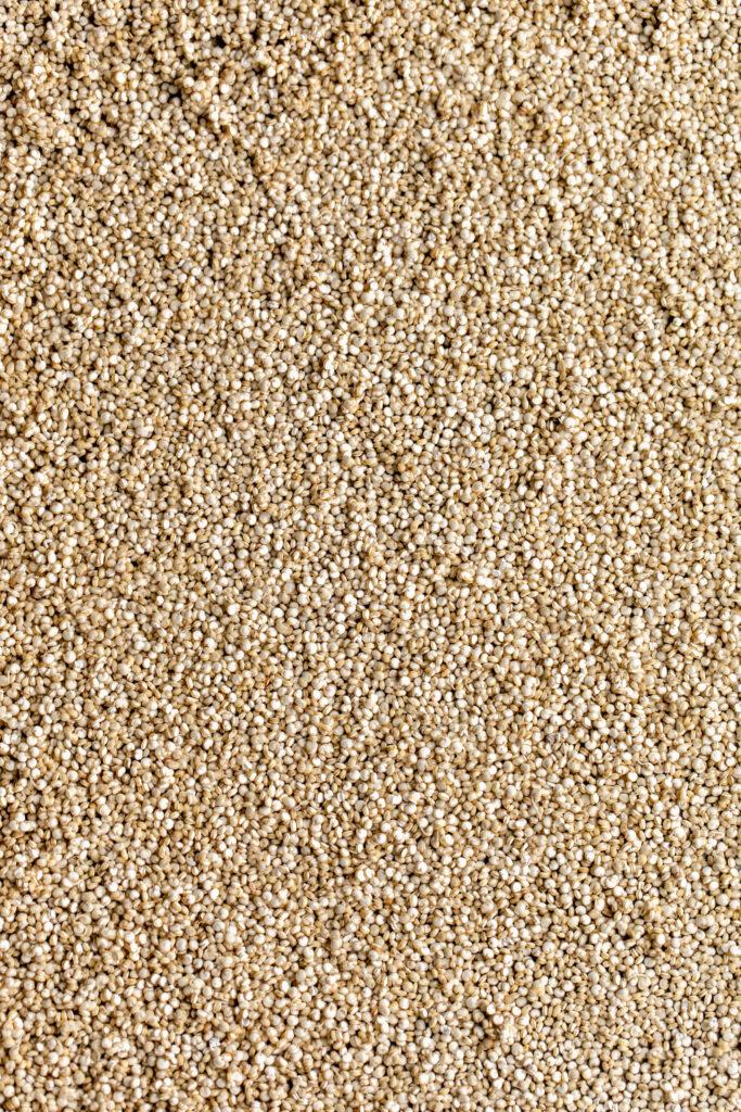 closeup grains of quinoa